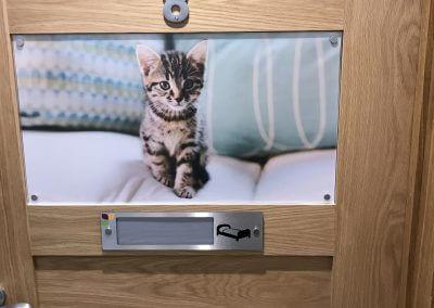 Cat Dementia Signage